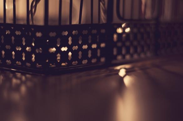 birdcage(643)web