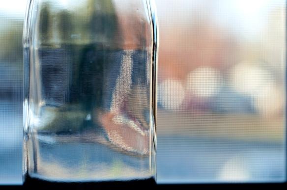 bottle(836)web