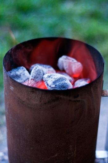 coals(677)web