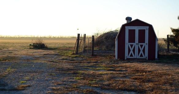 farm(1190)web