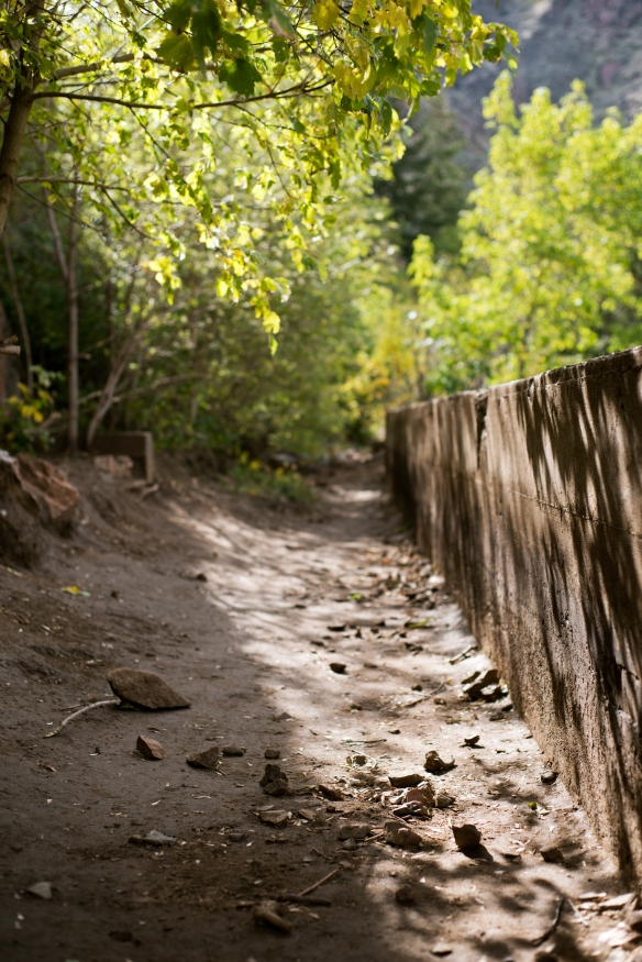 trail(102)web