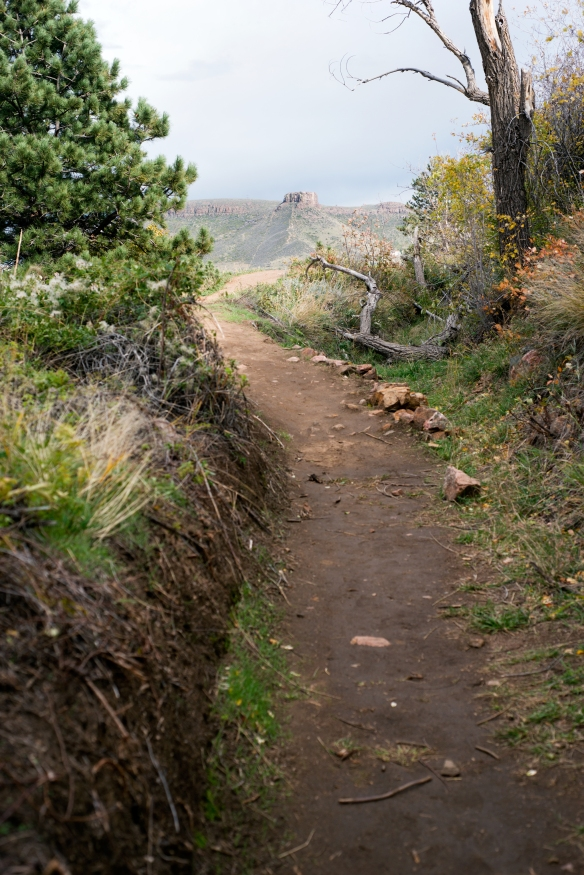 trail(136)web