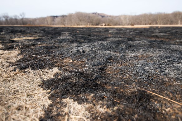 burned(2700)wbe