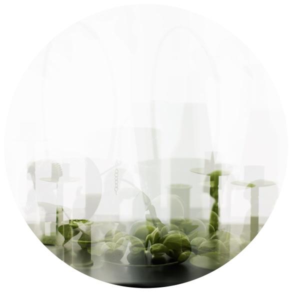 greencircle7494web